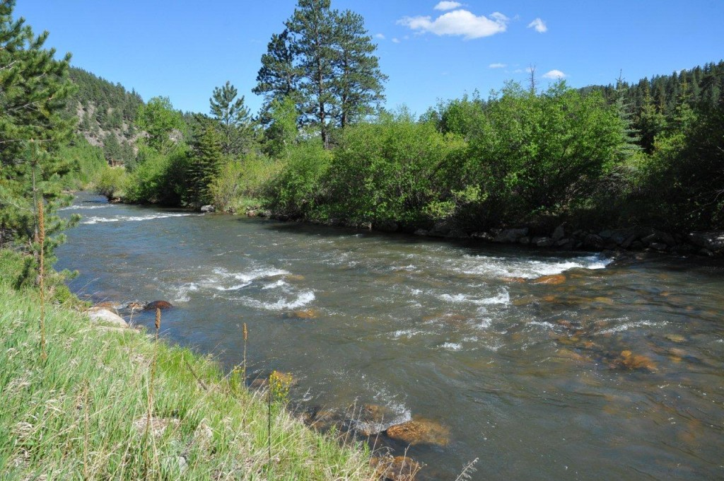 South platte outfitters deckers colorado fly fishing on for Chatfield fishing report